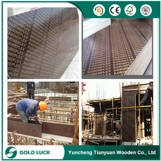Marine Phenolic Shuttering Film Faced Plywood for Construction pictures & photos