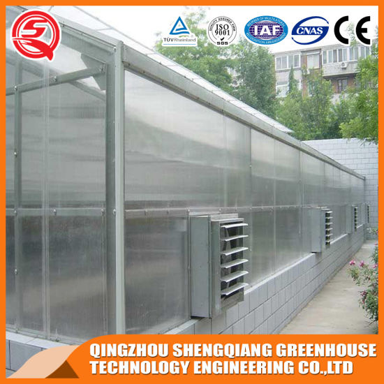 Commercial Aluminum Profile Polycarbonate Sheet Greenhouse