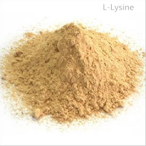 Feed Additives L-Lysine Animal Fodder 98.5% pictures & photos