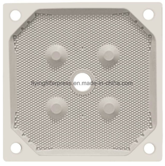 Higher Pressure PP Membrane Filter Plate Xg800 pictures & photos