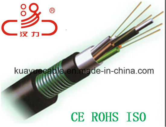 GYTA Optical Fiber Cable/Computer Cable/ Data Cable/ Communication Cable/ Audio Cable