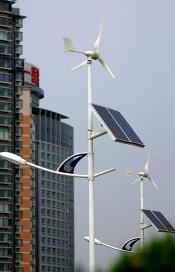30W 40W 50W 60W 80W 100W Wholesale Price Outdoor House LED Wind Solar Hybrid Street Light