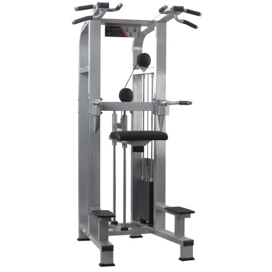 China Chin/DIP Assist Machine Weight Gym Trainer Fitness