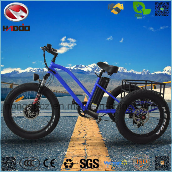 48V 500W Fat Tire Hydraulic Suspension Cargo Electric Tricycle