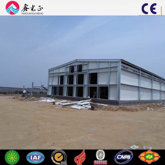 High Production Efficiency Steel Structure Poultry House for 10000 Chickens