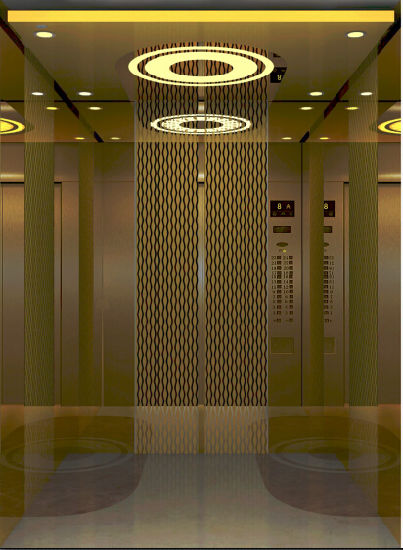 Good Bronze Brushed Stainless Steel Home Lift Passenger Elevator