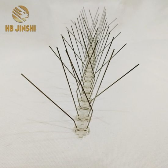 50cm Length Plastic Based Anti-Bird Spikes pictures & photos