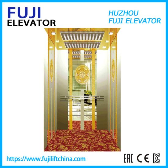 Hot Sale & High Quality Home Passenger Elevator with Good Service