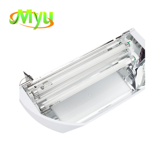 Wall Sconce Sticky Fly Trap Catcher Bright UV Light Bug Zapper Insect Trap  for Hotel Food Service