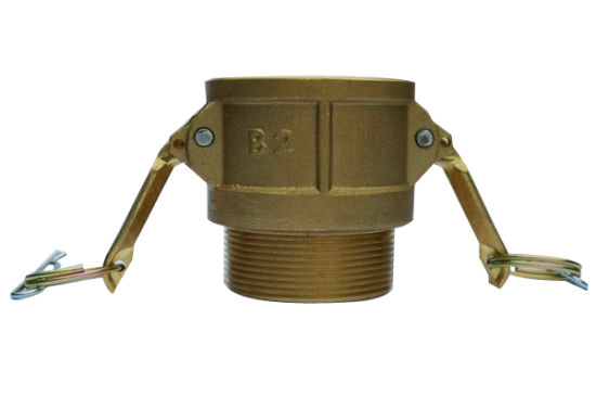 Brass Camlock Coupling Quick Couplings Female Type D