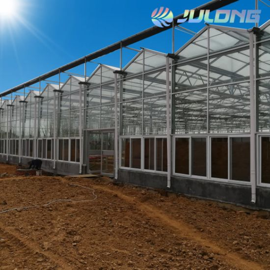 2019 China Professional Factory Building Material Venlo Glass Greenhouse for Vegetables