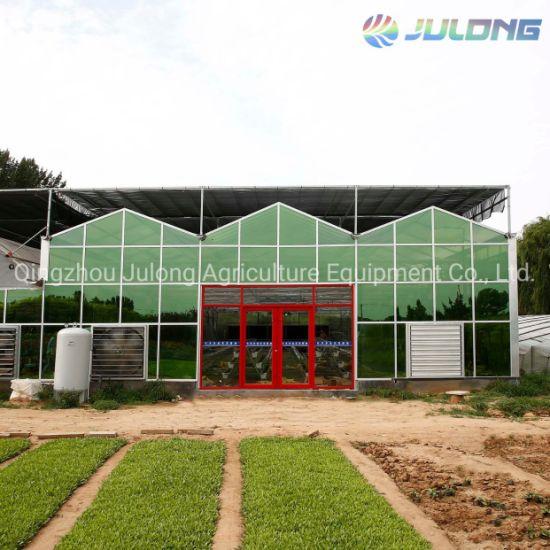 2019 Venlo Glass Greenhouse Hydroponic Soilless Greenhouse on Sale