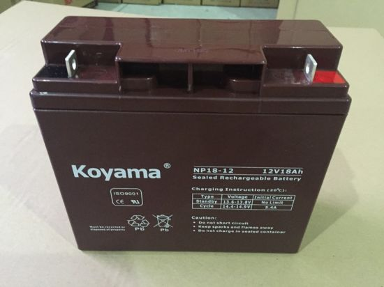 12V18ah Emergency Lighting Lead Acid Battery /AGM Alarm Battery pictures & photos