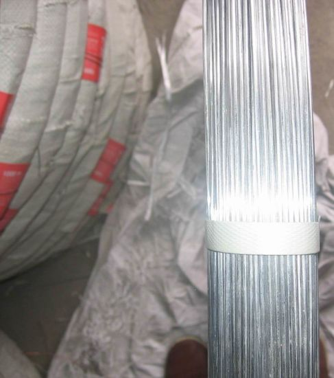 Factory Price Oval Galvanized Wire for Farm Fencing