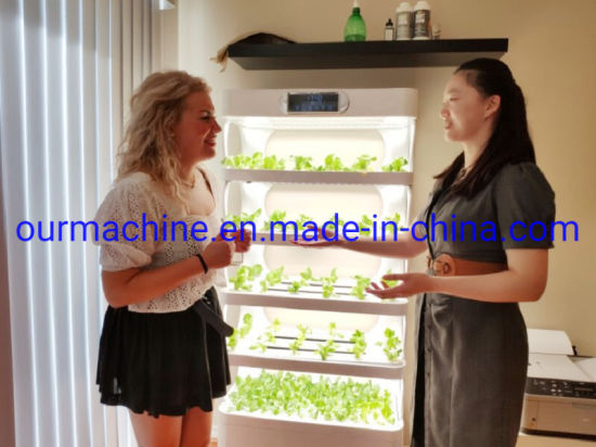 New Designed Mini Farming Smart Home Office Hydroponics Growing System
