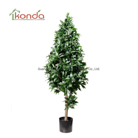 Wholesale Indoor Decorative Artifical Evergreen Plant for Sale Artificial Laurel Tree
