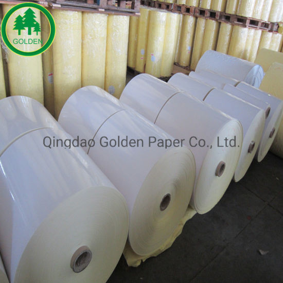 PE Coated Cupstock Board for Paper Cup Use, Food Grade Paper