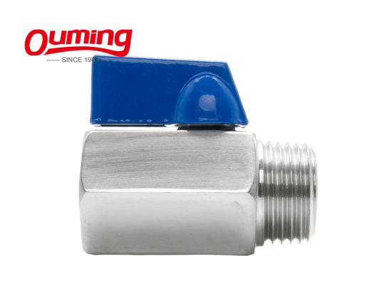 Micro Water Dn8wk-S Mini Stainless Steel Float Valve