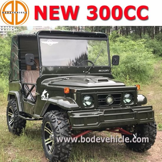 Newest 300cc 2 Seat Willys Jeep UTV for Adult (MC-432) pictures & photos