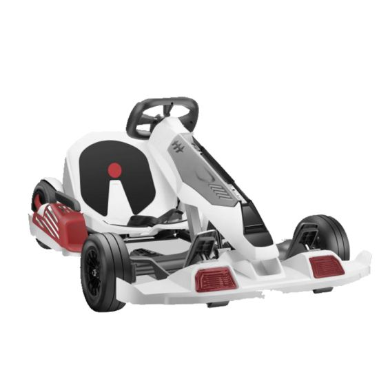 Agl New Type 350W Electric Go Kart 6ah for Adult and Child