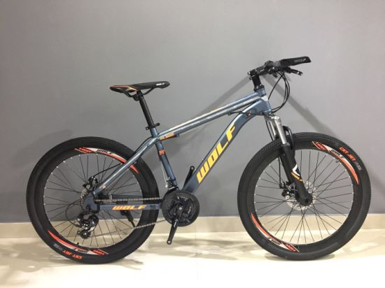 High Quality Factory Manufacturer Mountain Bike/Bicycles Be-019