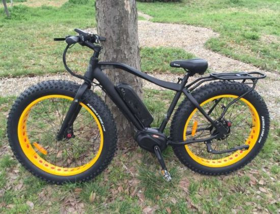 Hot Selling MID Drive Motor Electric Bicycle with Fat Tire pictures & photos
