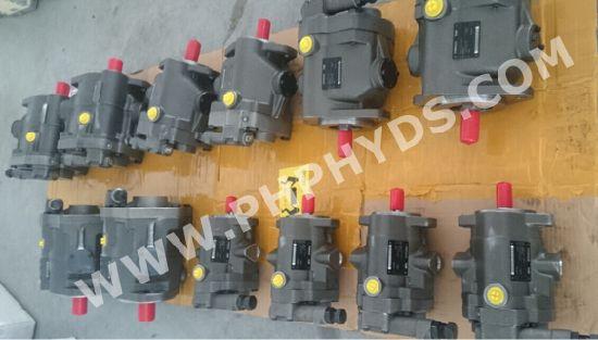 Hydraulic Piston Pump Vickers PVB6 Pump Assy china hydraulic piston pump, vickers, pvb6, pump assy china