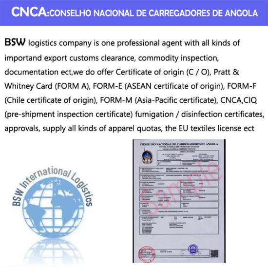 From China to Angola Cnca &BV (Bureau Veritas) pictures & photos