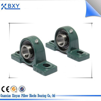 Bxy Cast Iron Housing Two Bolt Flange Pillow Block Bearing UCFL205 pictures & photos