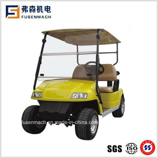 2 Seater Mini Electric Golf Carts with Ce pictures & photos
