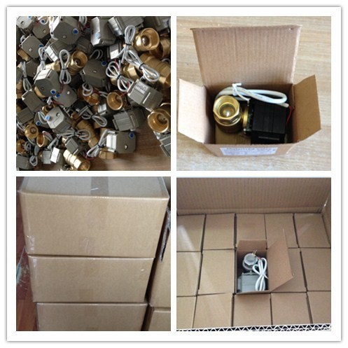 2016 OEM Dn10 Series High Quality Mini Cw617n Electric Ball Valve pictures & photos