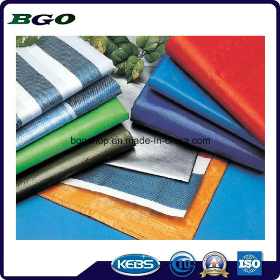 Manufacturer Price PE Tarpaulin pictures & photos