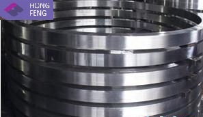 Alloy Steel/Stainless Steel Forged Round Ring pictures & photos