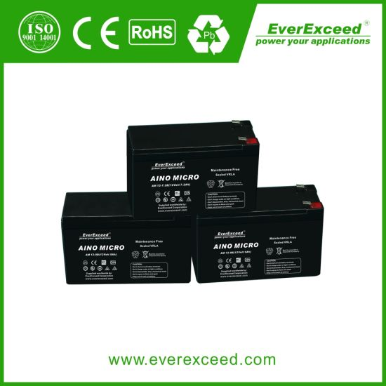 Everexceed Aino Micro Range UPS/ Emergency Light/ Telecom 12V 9ah AGM Rechargeable Battery