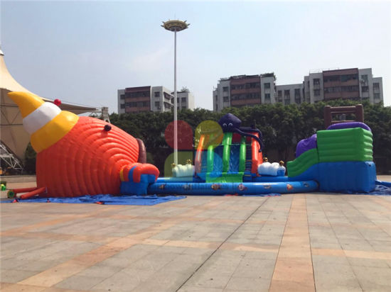 Inflatable Water Slide Amusement Park / Water Park Slide on Sale pictures & photos