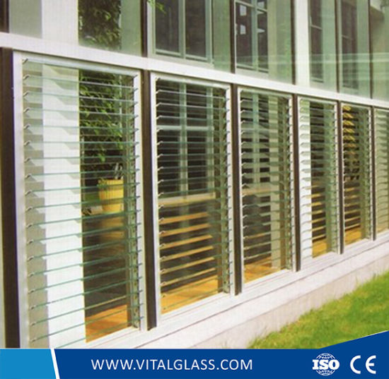 Green/Blue/Bronze Louver Glass for Windows/Bathroom Glass pictures & photos