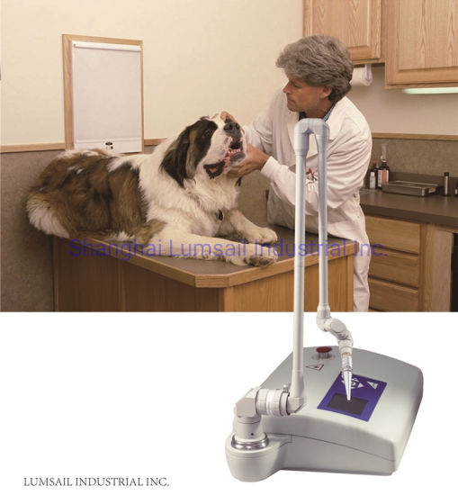 CO2 Laser Medical Instrument Veterinary Animal Surgical Laser Therapy Equipment