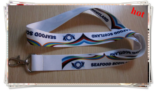 Fashion ID Card Lanyard with Custom Logo (YB-LY-LY-18) pictures & photos