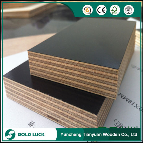 12mm Poplar Core Phenolic Glue 9 Plies Laminated Construction Board Film Faced Plywood pictures & photos