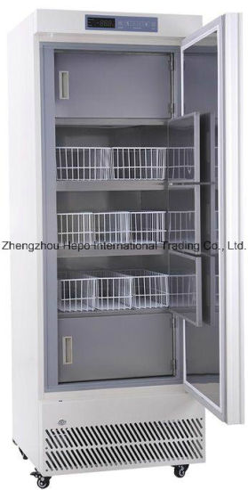 China Super Manufacture -25degree Deep Freezer (330L) pictures & photos