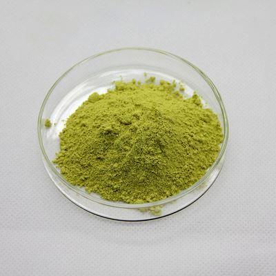Quercetin 98% Sophora Japonica Extract (CAS 117-39-5)
