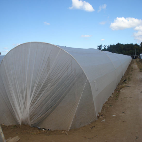 UV Treated Nonwoven Fabric for Agriculture pictures & photos