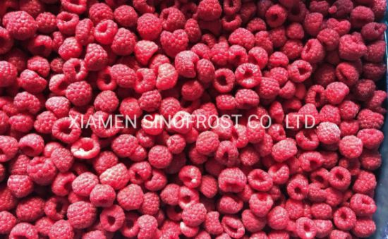 IQF Raspberries, Frozen Rapsberries, IQF Frozen Raspberries, IQF Raspberry, Frozen Raspberry, IQF Cultivated Raspberries, Wholes/Brokens/Crumbles