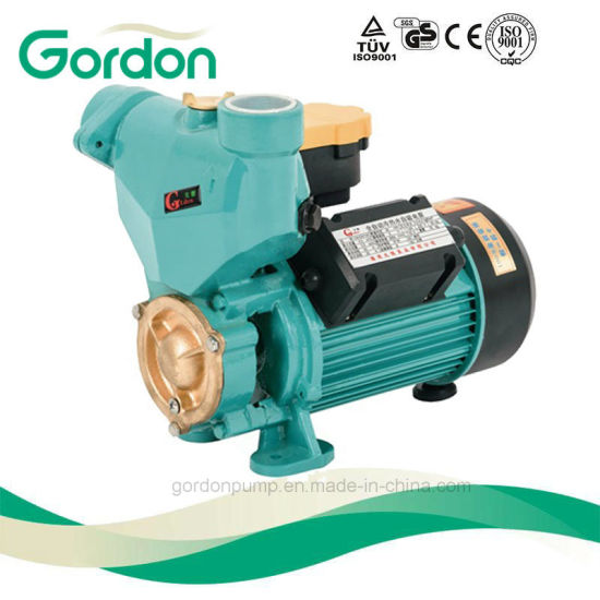 Domestic Electric Copper Wire Self-Priming Auto Pump with Pressure Gauge pictures & photos