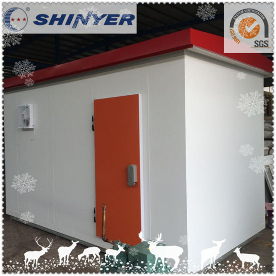 Walk in Freezer Room with PU Sandwich Panels pictures & photos