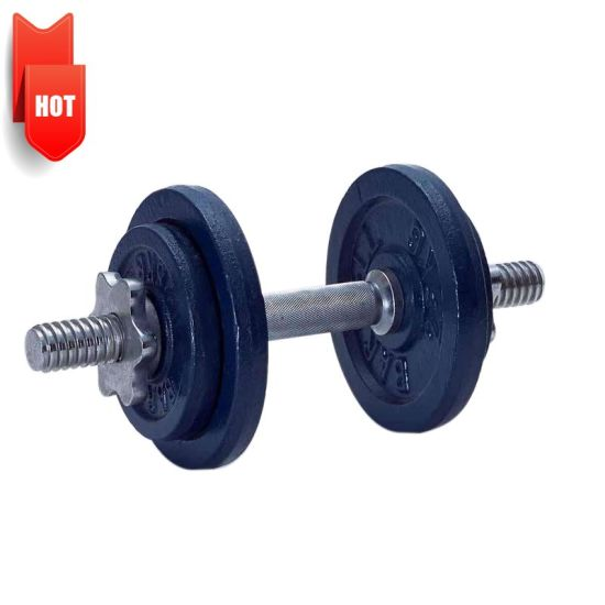 Foundry OEM Ductile Gray Cast Iron Sand Casting Black Weight Plates Gym Fitness Dumbbell Set Weight Plate