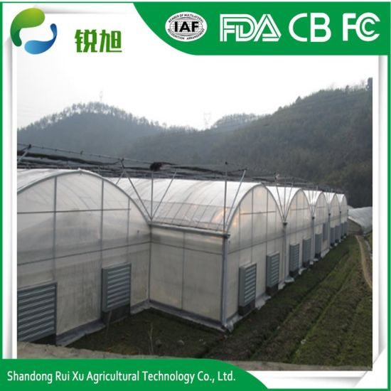 PE Material and Film Cover Greenhouse for Agriculture/Vegetable/Flower pictures & photos