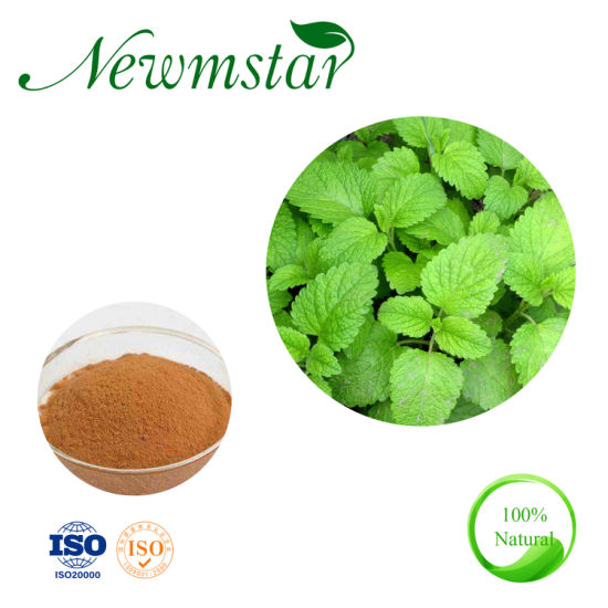 Wholesale Customized Service Organic Melissa Officinalis Leaf Extract Lemon Balm Extract for Antioxidant and Antitumor Activity.