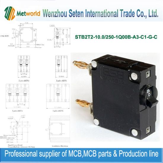 Micro Switch Circuit Breaker (STB2T2-10.0)