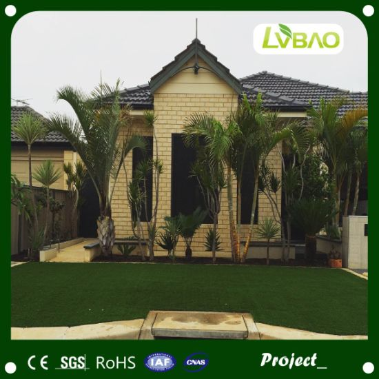 Garden Decoration Home Decoration Landscape Artificial Turf Lawn Grass pictures & photos